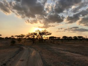getting to selous