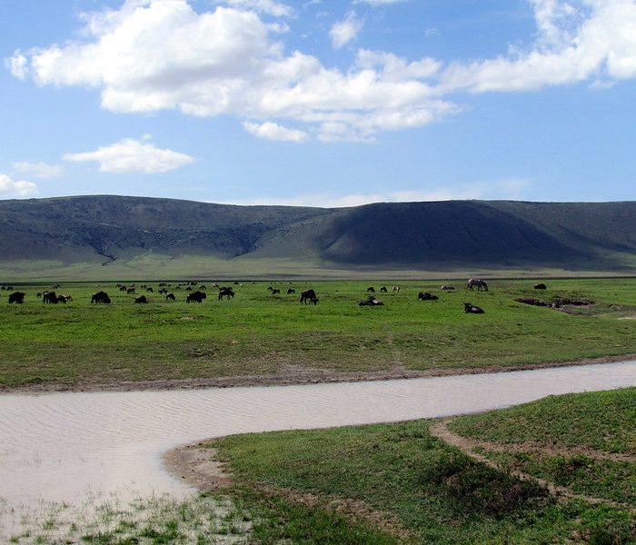 Tanzania Crater Safari Ngorongoro