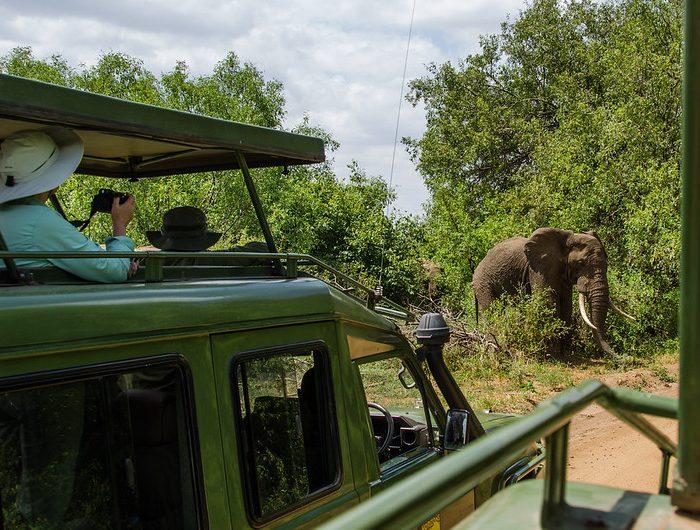 Best 7 Days Safari Tanzania
