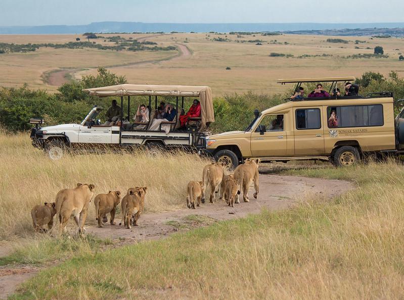 Tanzania luxury safari companies