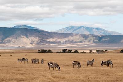 6 day tanzania safari
